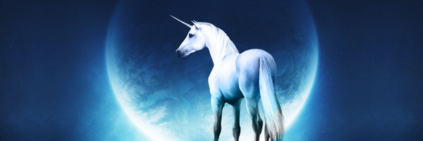 The Unicorn Designer